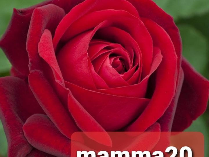 Festa della Mamma coupon mamma20